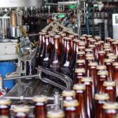 Anuncia Bronco paro de producción y distribución de cerveza