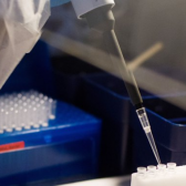 Garantiza Gobierno de México que vacuna contra COVID-19 será gratuita y universal