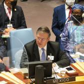 Participa Marcelo Ebrard en sesión del Consejo de Seguridad de la ONU