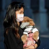 Confirma Hong Kong el primer caso de coronavirus en una mascota