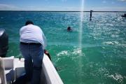Rescata a 12 turistas en Bacalar