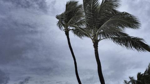 Carolina del Norte podría recibir ciclón Bill este lunes