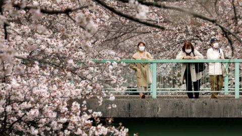 Japón podría pagar gastos de turistas para ayudar a la reactivación de economía