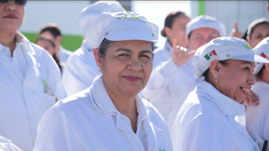 Convoca Gobierno de Tamaulipas a participar en encuesta sobre igualdad