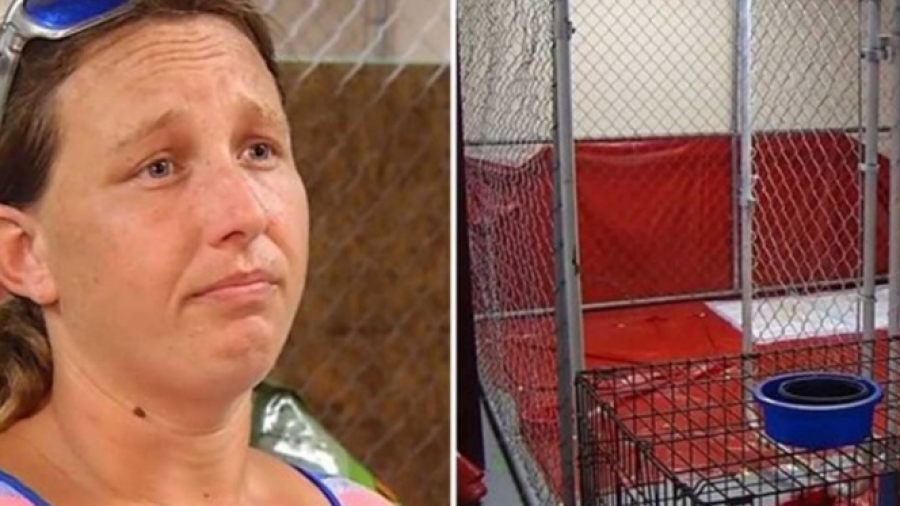 "Arrestada por salvar animales tras huracán ""Florence"""