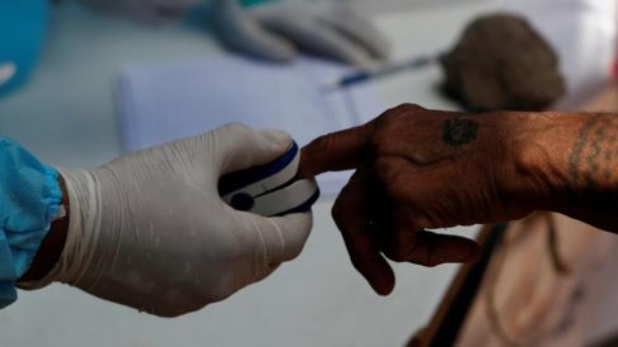 Monos roban pruebas positivas de COVID-19 en India