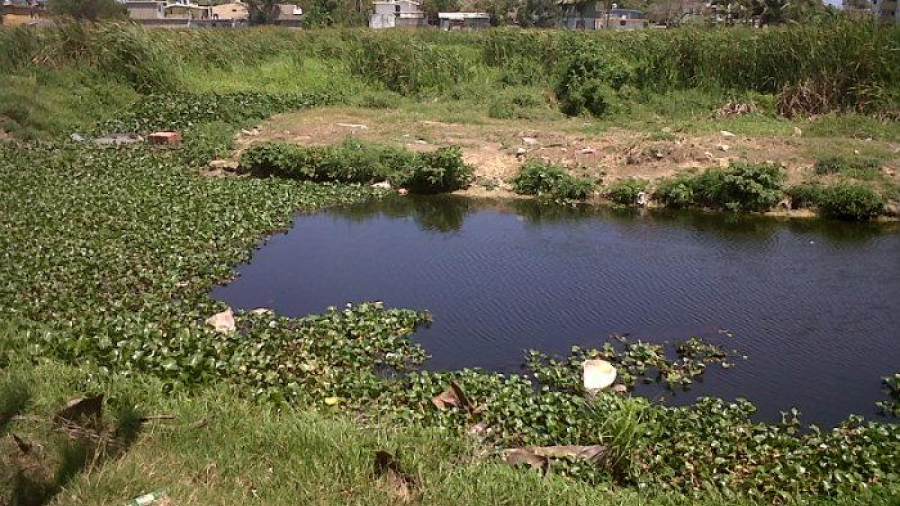 Supervisa alcalde trabajo de limpieza y desazolve en laguna Nuevo Amanecer
