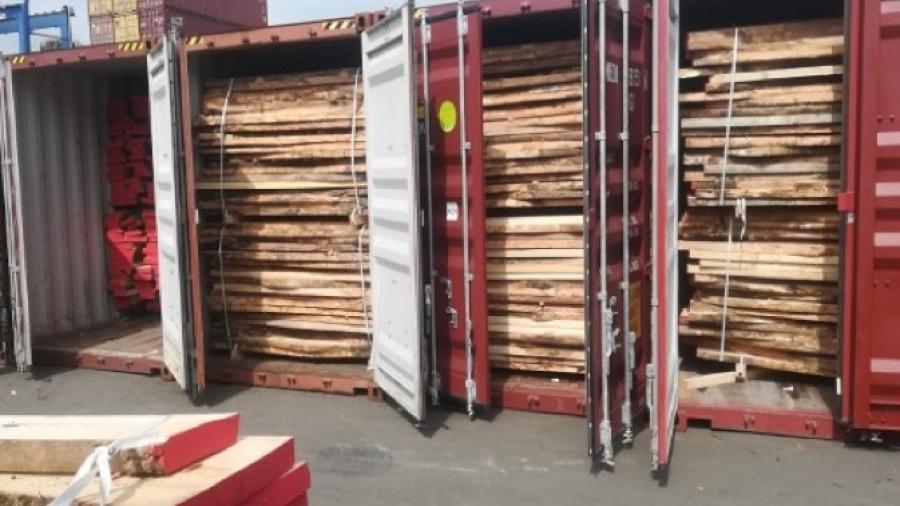 Profepa impide ingreso de madera a Tamaulipas