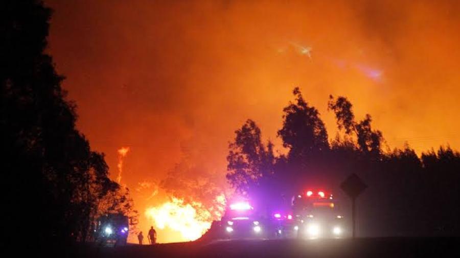 Asciende a 80 número de muertos por incendios en California