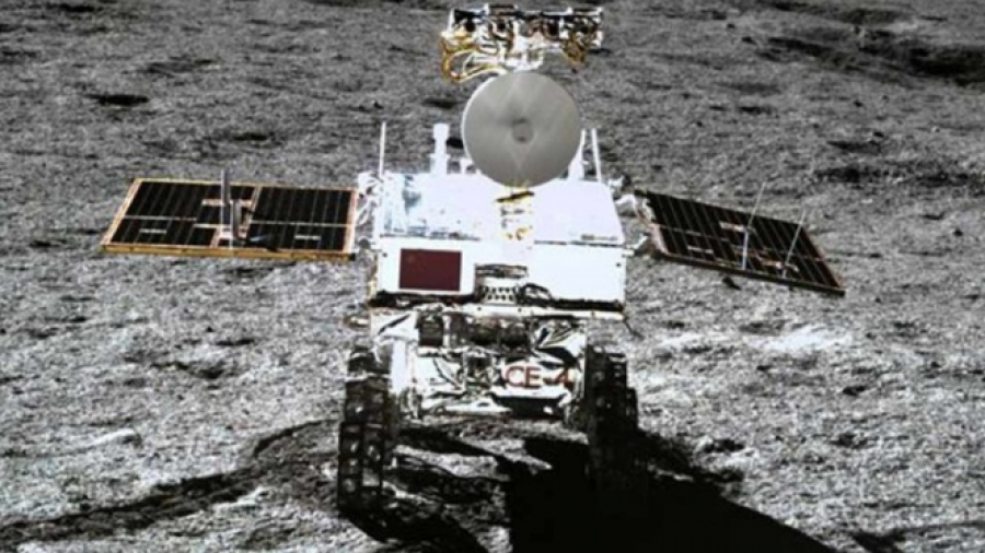 Esperan semilla de algodón brote en la luna