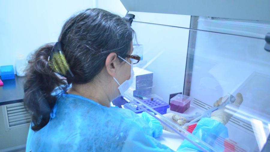 Registra Tamaulipas 76 nuevos casos de COVID-19