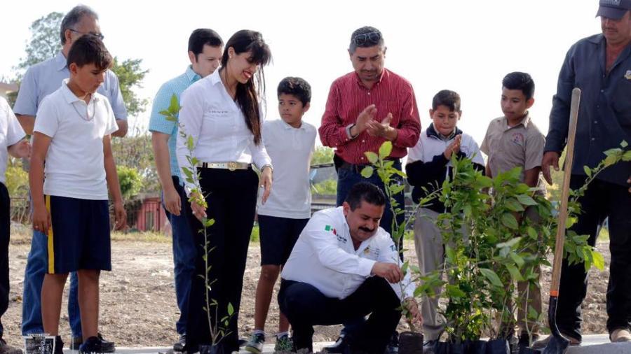 Inicia reforestación de áreas verdes en Valle Hermoso