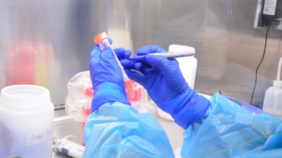 Registra SST 73 nuevos casos de COVID-19