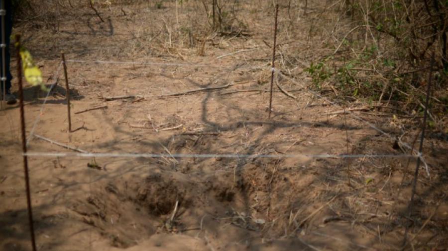 Índices de violencia en Veracruz no han logrado bajar