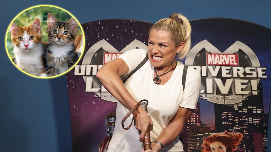 Tunden en redes sociales a Leticia Calderón por comentarios sobre gatos