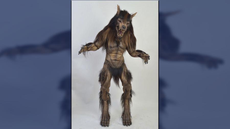 ¿Es esta la nueva mascota de los Lobos BUAP?