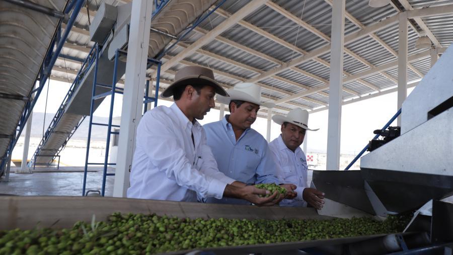 Ofrece gobierno de Tamaulipas respaldo a inversionistas