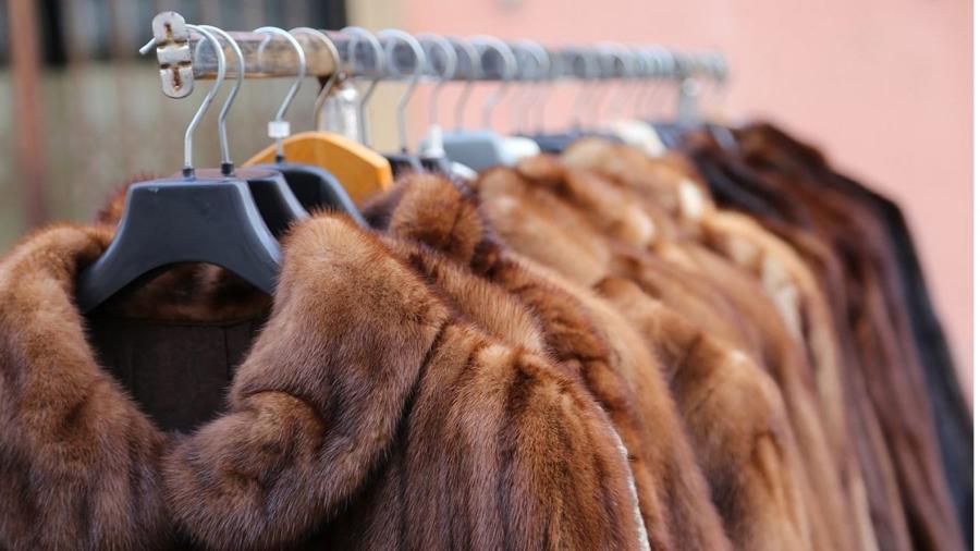 Israel prohíbe el comercio de pieles para la moda