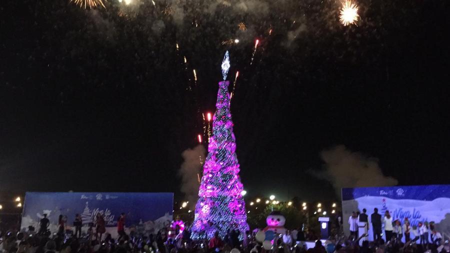 Viven familias maderenses la Navidad con encendidos del pino