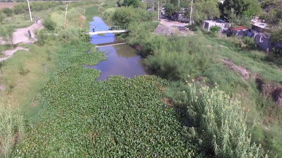 Este lunes Iniciarán los Trabajos preventivos de limpieza en el dren Rio Bravo.