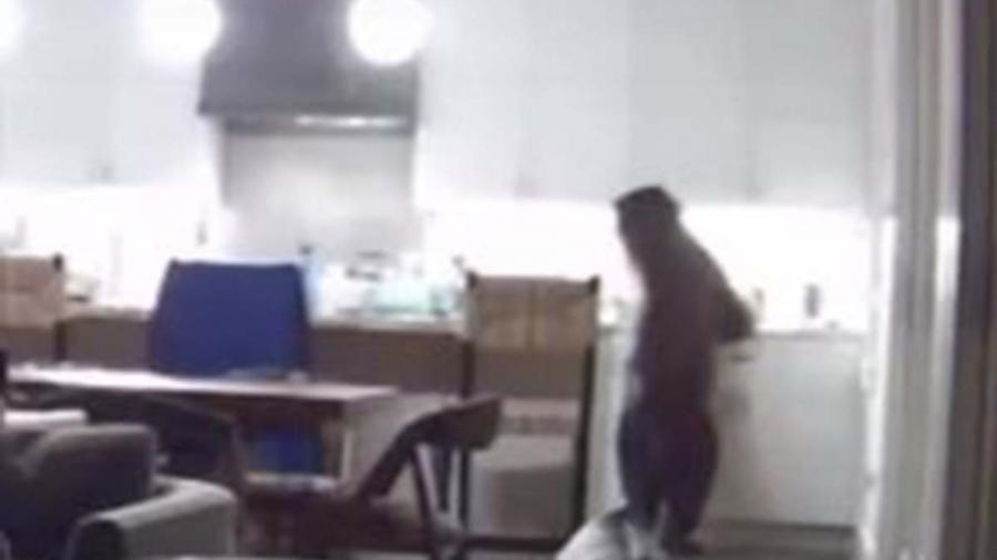 Dos jóvenes se encuentran con el oso 'Yogui' de la vida real