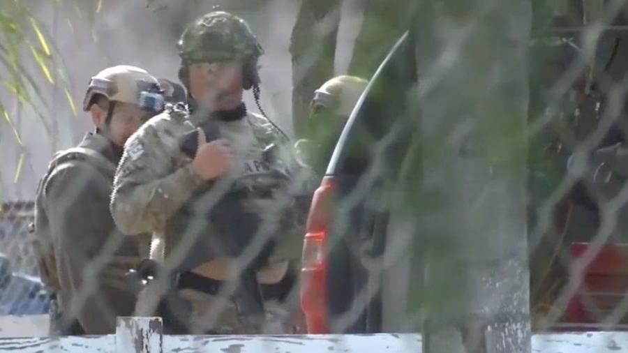 Operativos antinarcóticos dejan dos detenidos