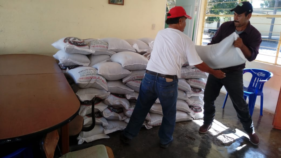 Productores reciben 114.3 ton de semilla