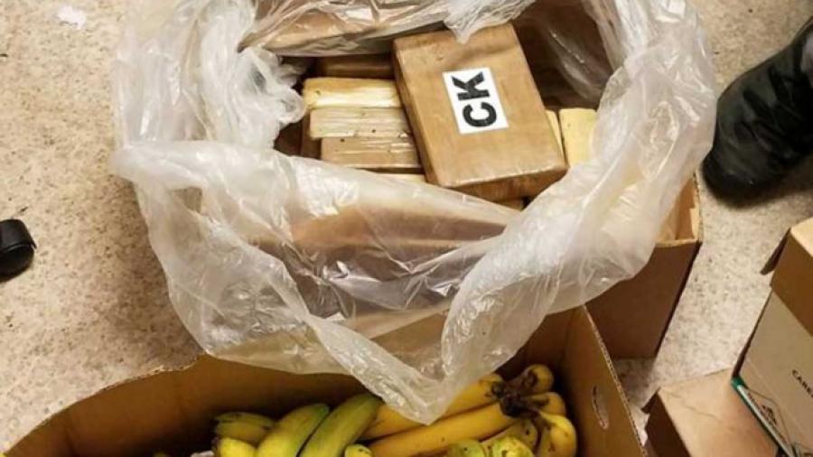 Aseguran cocaína en cajas de plátanos