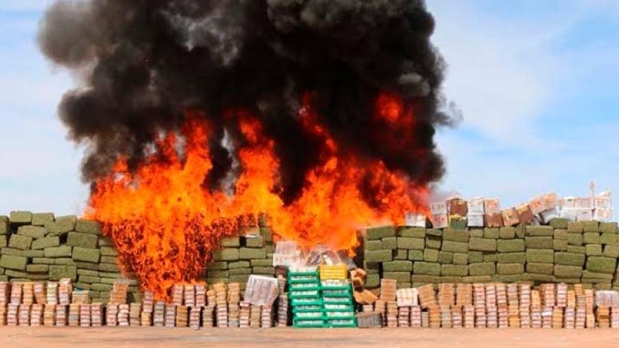 Destruyen más de cuatro toneladas de narcóticos en Sonora
