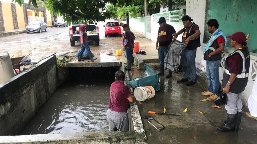 Permanente Limpieza de Canales en Ciudad Madero