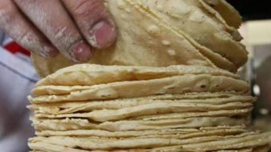 Continúa en pie el aumento a la tortilla