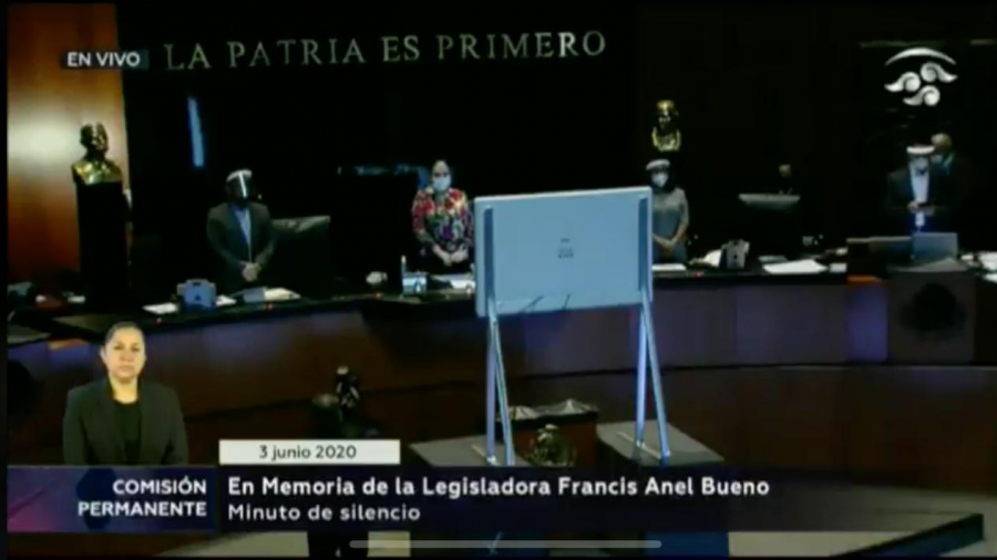 Senado guarda un minuto de silencio en memoria de  Francis Bueno