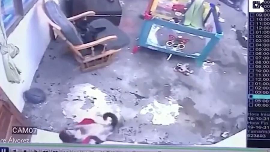 Gato salva a niño de caer por las escaleras