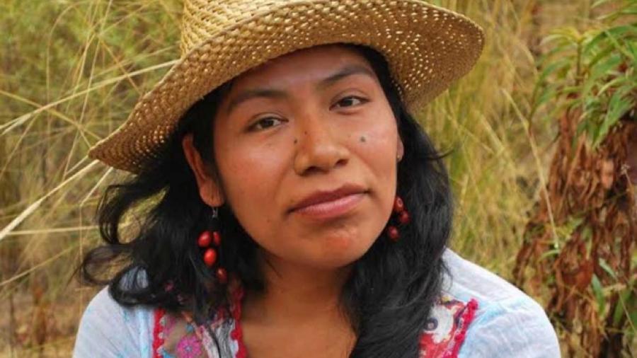 Ambientalista desaparecida es localizada con vida