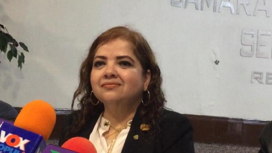 No descarta Lety Cisneros reelección como Presidenta de CANACO