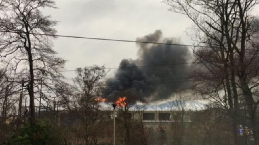 Se registra incendio en zoológico de Reino Unido