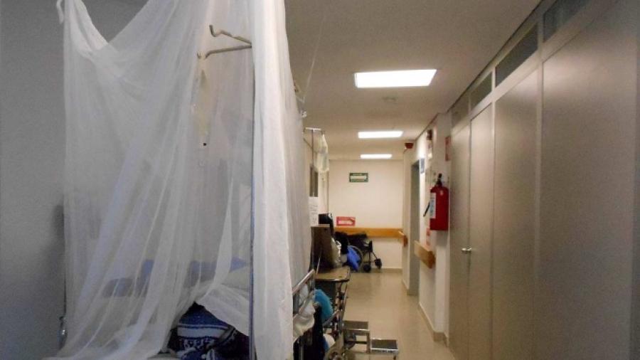 Asciende a 44 casos de dengue hemorrágico en Nuevo León