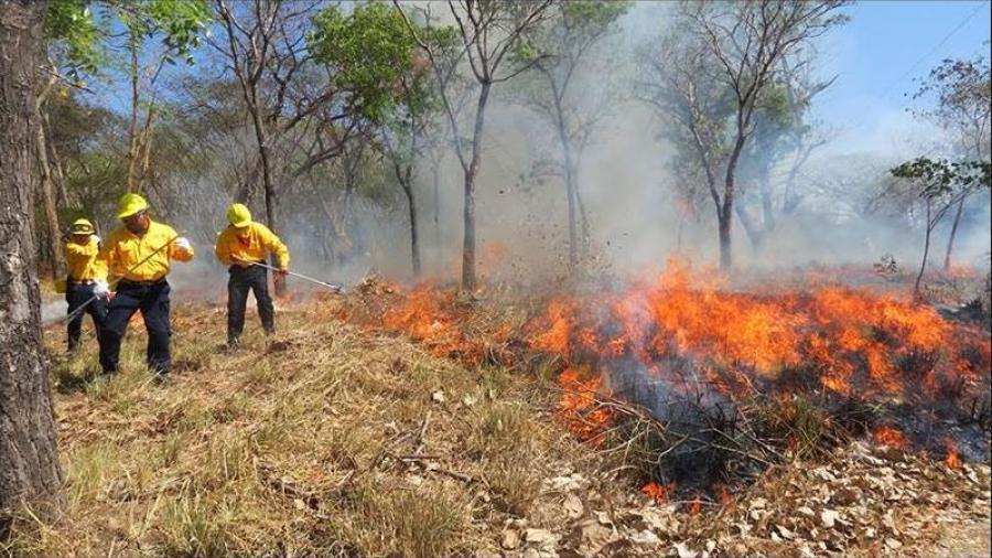 Tres incendios forestales mantienen en alerta a autoridades