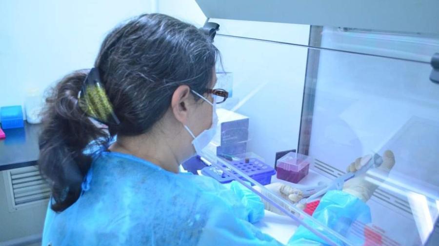 587 nuevos casos de COVID-19 en Tamaulipas