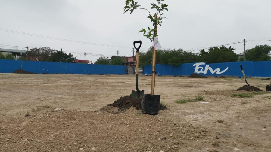 Arranca Programa de Reforestación en escuelas