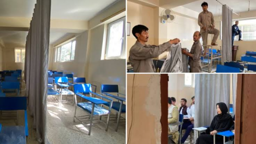 Con cortinas al medio, universidades en Afganistán separan a mujeres de los hombres