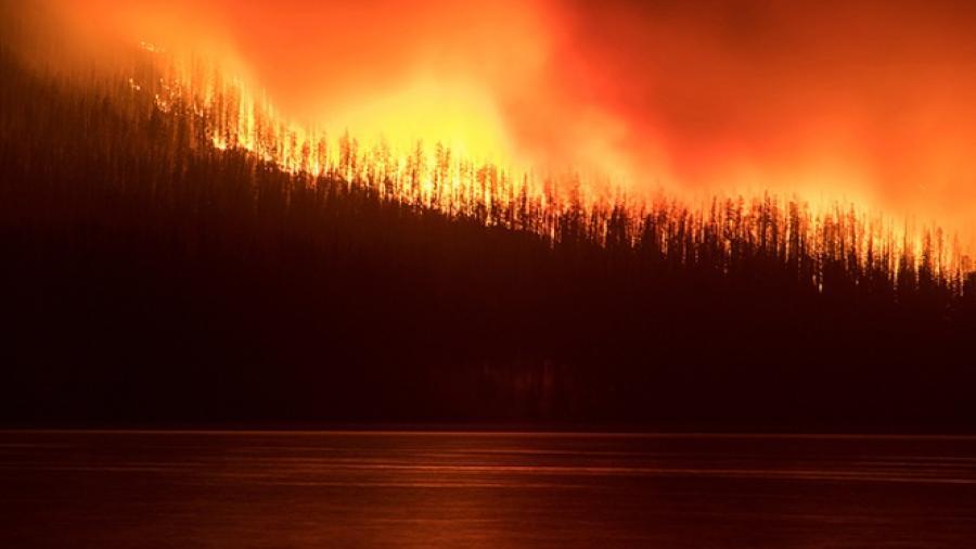 Evacuaciones en  parque de Montana por incendio