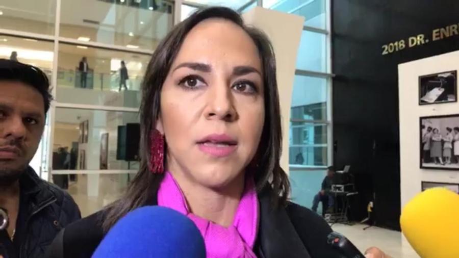 En el 2018 aumentó la Obra Pública en Tamaulipas: Cecilia del Alto