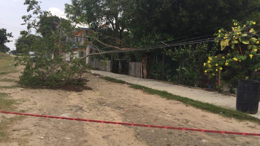 Cables de alta tensión ponen en riesgo a familias de Altamira