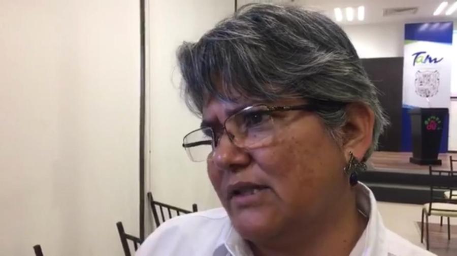 Tamaulipas sin defunciones por picadura de la violinista