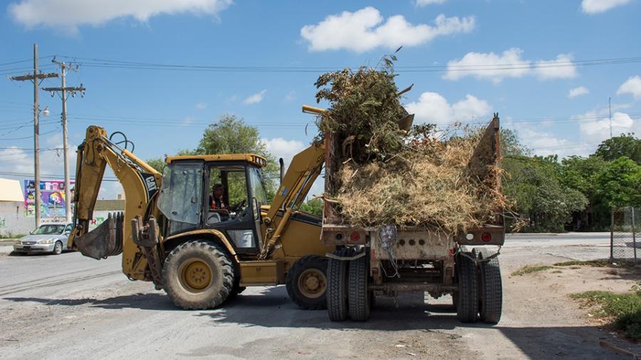 Servicios Públicos Primarios realiza el levantamiento de ramas