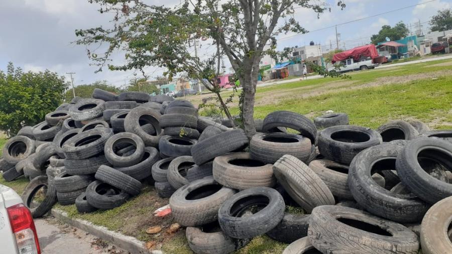 Intensifica Tamaulipas acciones simultáneas contra COVID-19, dengue y sarampión
