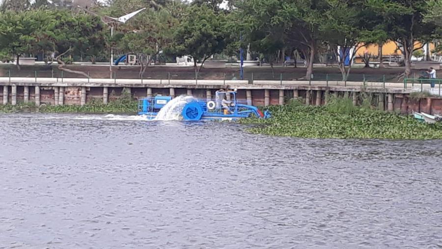 Continúan trabajos de limpieza de maleza acuática, en la laguna de champayan