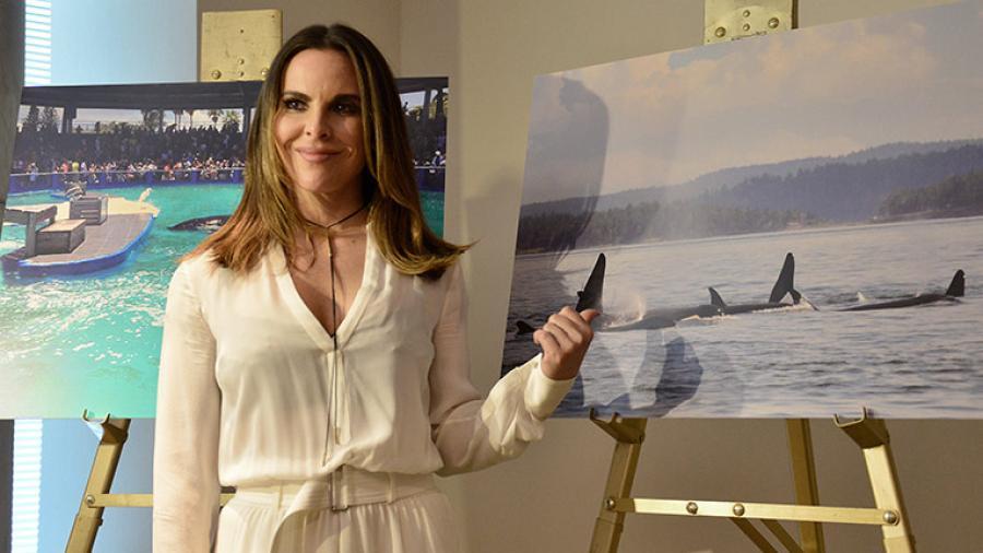 Acuario critica a Kate del Castillo por campaña para liberar orca