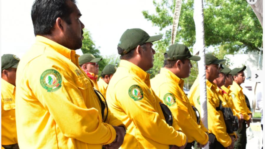 Tamaulipas pone en marcha Campaña de Prevención contra Incendios Forestales